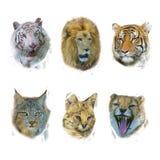Pintura digital dos mamíferos selvagens ilustração do vetor