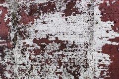 Pintura do branco de lasca Foto de Stock Royalty Free
