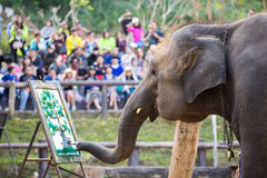 Pintura do elefante no papel na mostra do elefante, Tailândia Fotografia de Stock