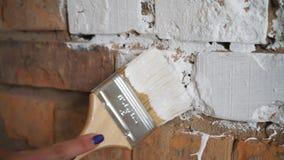 Pintura do tijolo vermelho no branco Nas mãos da escova de pintura das meninas A menina faz reparos vídeos de arquivo
