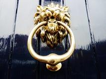Pintura dourada dos azuis marinhos da aldrava de porta do leão Fotografia de Stock Royalty Free