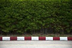 Pintura en el sendero y la calle con rojo Fotografía de archivo libre de regalías