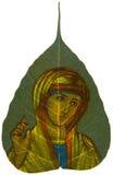Pintura en la hoja de Peepal - bendición de Madonna Foto de archivo