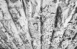 Pintura formada escamas #2 Imagen de archivo