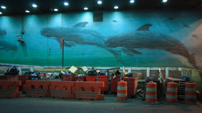 Pintura grande de la calle de ballenas fotos de archivo libres de regalías