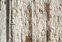 A pintura lascada na porta das placas idosas texture o fundo imagem de stock royalty free