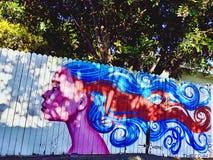 Pintura mural da cerca Fotos de Stock Royalty Free