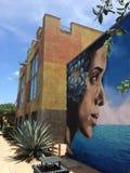 Pintura mural da rua com planta da agave Fotos de Stock Royalty Free