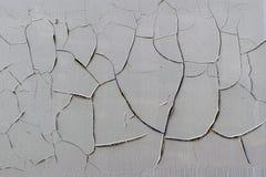 Pintura murcho na parede Foto de Stock Royalty Free