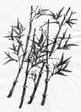 Pintura oriental del estilo, ramificaciones de bambú Foto de archivo