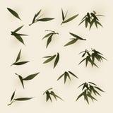 Pintura oriental do estilo, folhas do bambu ilustração royalty free