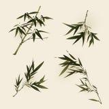 Pintura oriental do estilo, folhas do bambu Fotografia de Stock Royalty Free