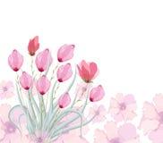 Pintura original de la acuarela de los tulipanes Foto de archivo libre de regalías