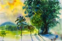 Pintura original del paisaje de la acuarela colorida de campo del arroz Foto de archivo libre de regalías