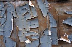 Pintura que forma escamas Imagen de archivo libre de regalías