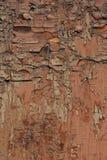 Pintura rachada na textura de madeira do fundo foto de stock