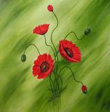 Pintura roja de las amapolas Imagen de archivo libre de regalías