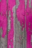 Pintura rosada de la peladura Imagenes de archivo