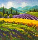 Pintura roxa do campo da alfazema Campo italiano do verão Francês Toscânia Campo do centeio amarelo Casas rurais e tre alto do ci foto de stock