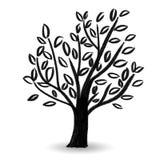 Pintura tirada mão do projeto do estilo dos grafittis do esboço das plantas do pastel da árvore da folha que tira bonito simples  Fotos de Stock Royalty Free