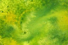Pintura verde da aquarela fotos de stock