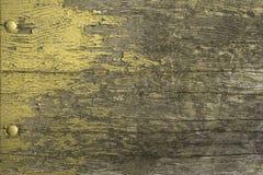 Pintura verde de la peladura Fotos de archivo