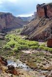 Pinturas河峡谷,在阿根廷 库存照片