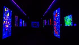 Pinturas con los colores fluorescentes solamente visibles con la luz negra del luz o ultravioleta Imagenes de archivo