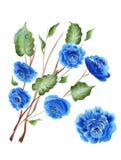 Pinturas de Bstract de flores y de hojas azules del verde Foto de archivo