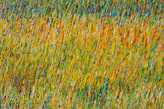 Pinturas de petróleo abstractas Fotos de archivo