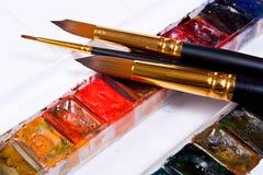 Pinturas profissionais da aquarela na caixa com escovas Imagem de Stock