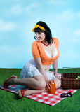 Pinup girl picnic Stock Photos