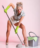 Pinup girl Woman housewife cleaner portrait Stock Photos