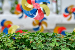 Pinwell in garden. Colorful pinwheel decoration in garden, which is hand craft decoration in holiday Royalty Free Stock Images