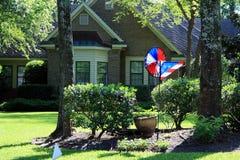 Pinwheel и флаг Стоковое Изображение