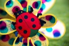 Pinwheel do Ladybug Fotografia de Stock