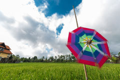 Pinwheel at the farmland Royalty Free Stock Images