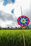 Pinwheel at the farmland Stock Image