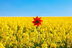Pinwheel  in a field Stock Image