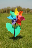 Pinwheel in a field. Photograph of a pinwheel photographed on grass using natural light Royalty Free Stock Image