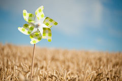 Pinwheel in a field. Pinwheel in a golden wheat field Stock Images