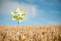 Pinwheel in a field Stock Images