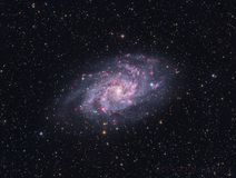 Pinwheel Galaxy - M33 Royalty Free Stock Photos