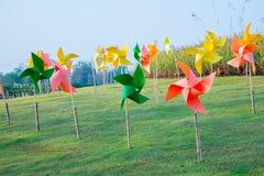 Pinwheel in the garden Stock Images