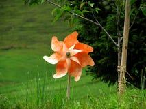 Pinwheel od ogródu Fotografia Stock