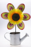 Pinwheel with sunflower. On white Royalty Free Stock Photography