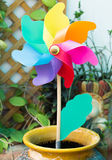 Pinwheel Toy ngarden Stock Photo