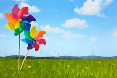 Pinwheels on Meadow Stock Image