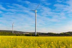 Pinwheels na gwałta polu z niebieskim niebem zdjęcie royalty free
