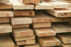 Piny boards. Green large sawn piny boards Stock Image